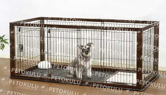 Köpek Çitinin Köpek Davranışları Üzerinde Etkisi