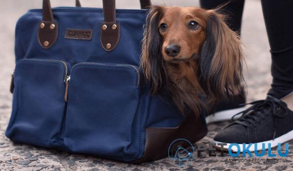 Konforlu köpek çantaları