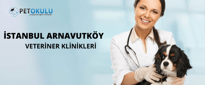 Arnavutköy Veteriner Klinikleri ✔️